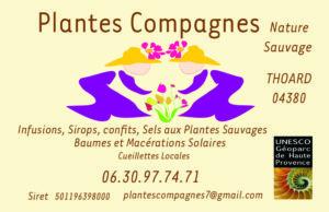 plantes_compagnes