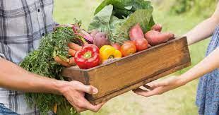 Un achat direct de produits extra frais auprès des agriculteurs et des producteurs proches de chez vous !