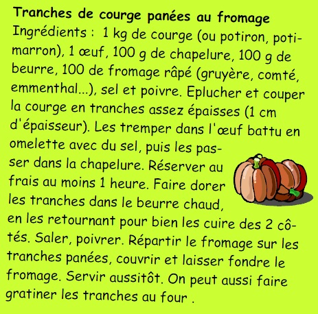 tranches-de-courge-panees-au-fromage